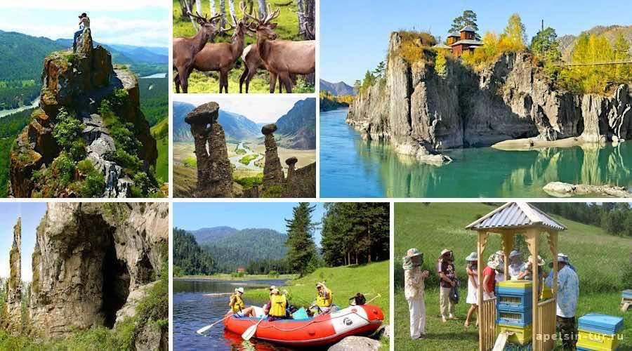 Экскурсии на Алтае