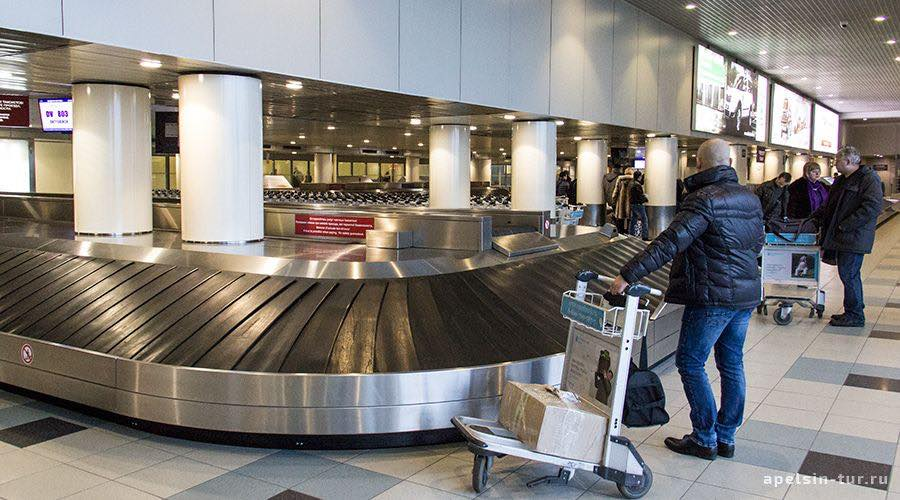 Потеряли багаж в аэропорту