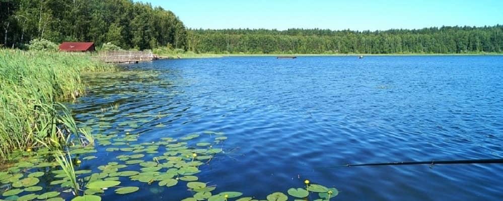 Пять озер в Омской области