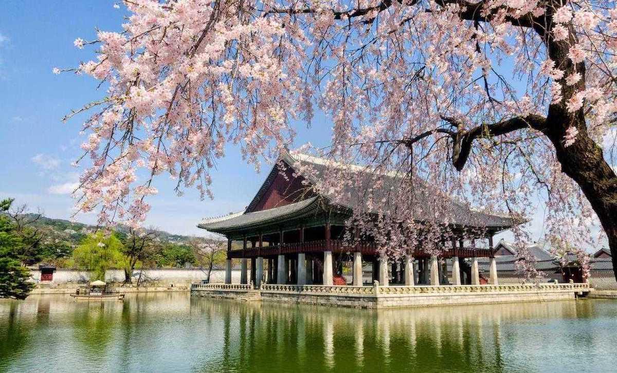 korea_tour